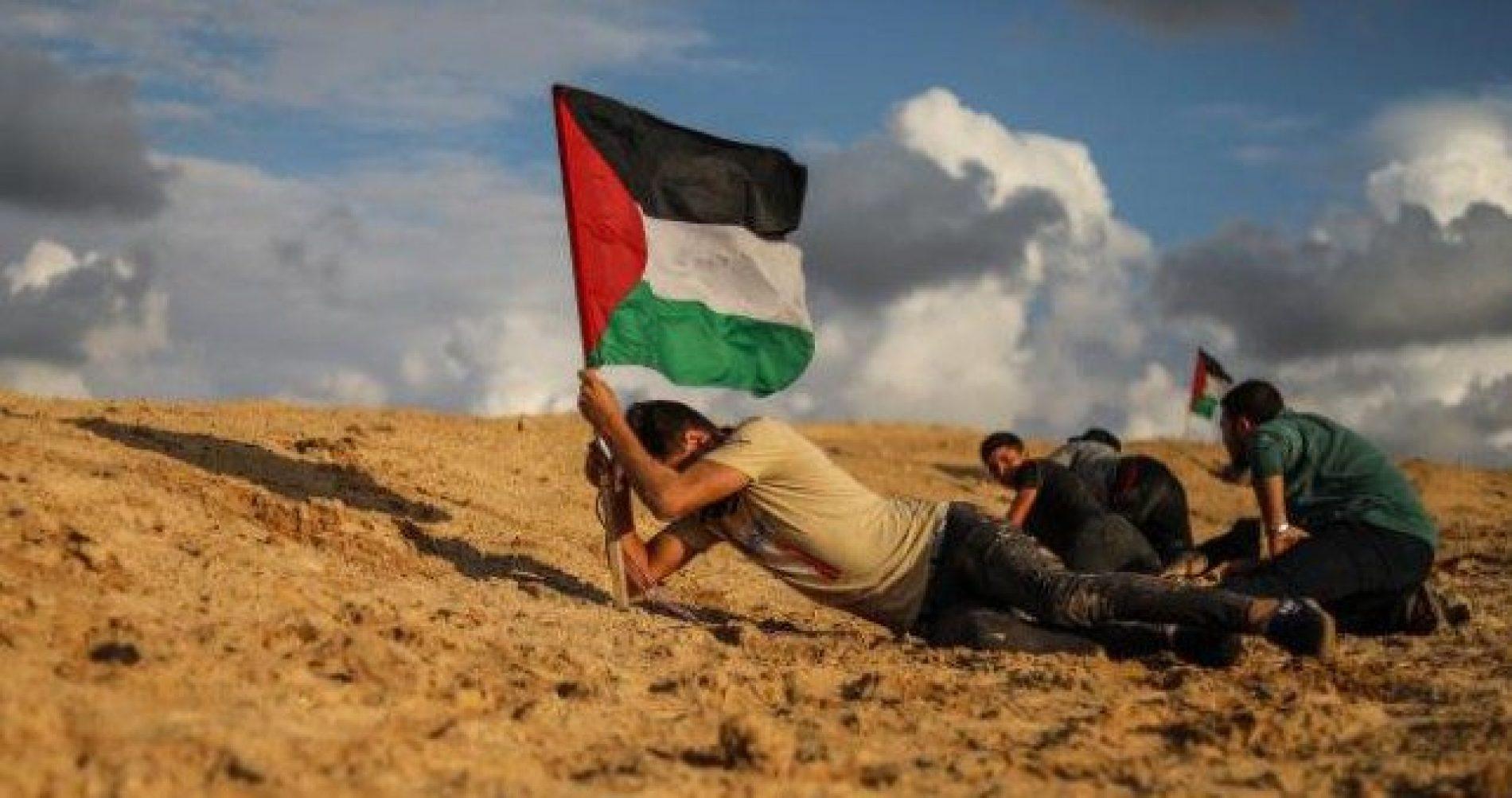Palestinci smatraju da su ih Arapi izdali (Video)