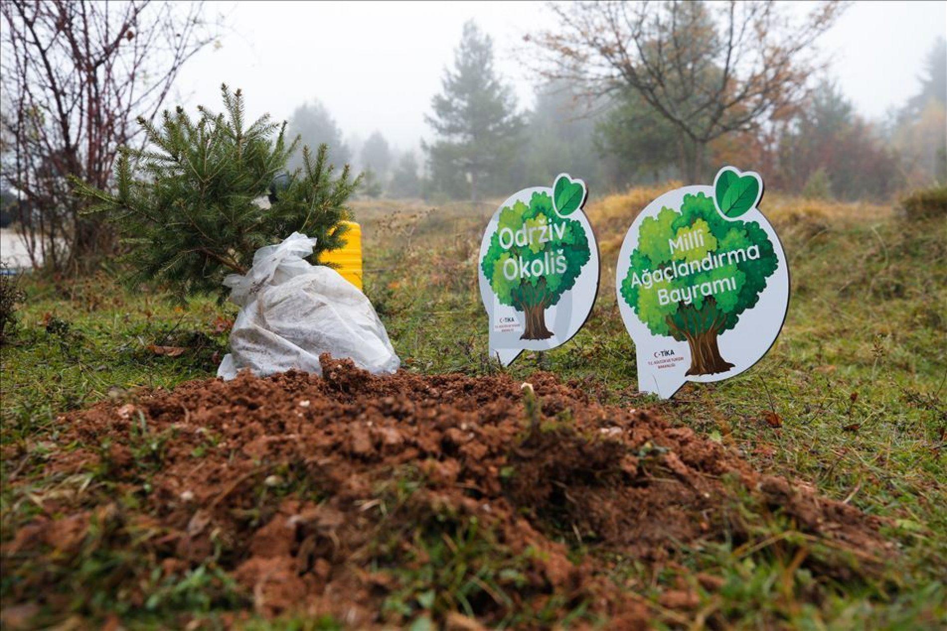Na izletištu Barice u Sarajevu zasađeno 1.000 sadnica