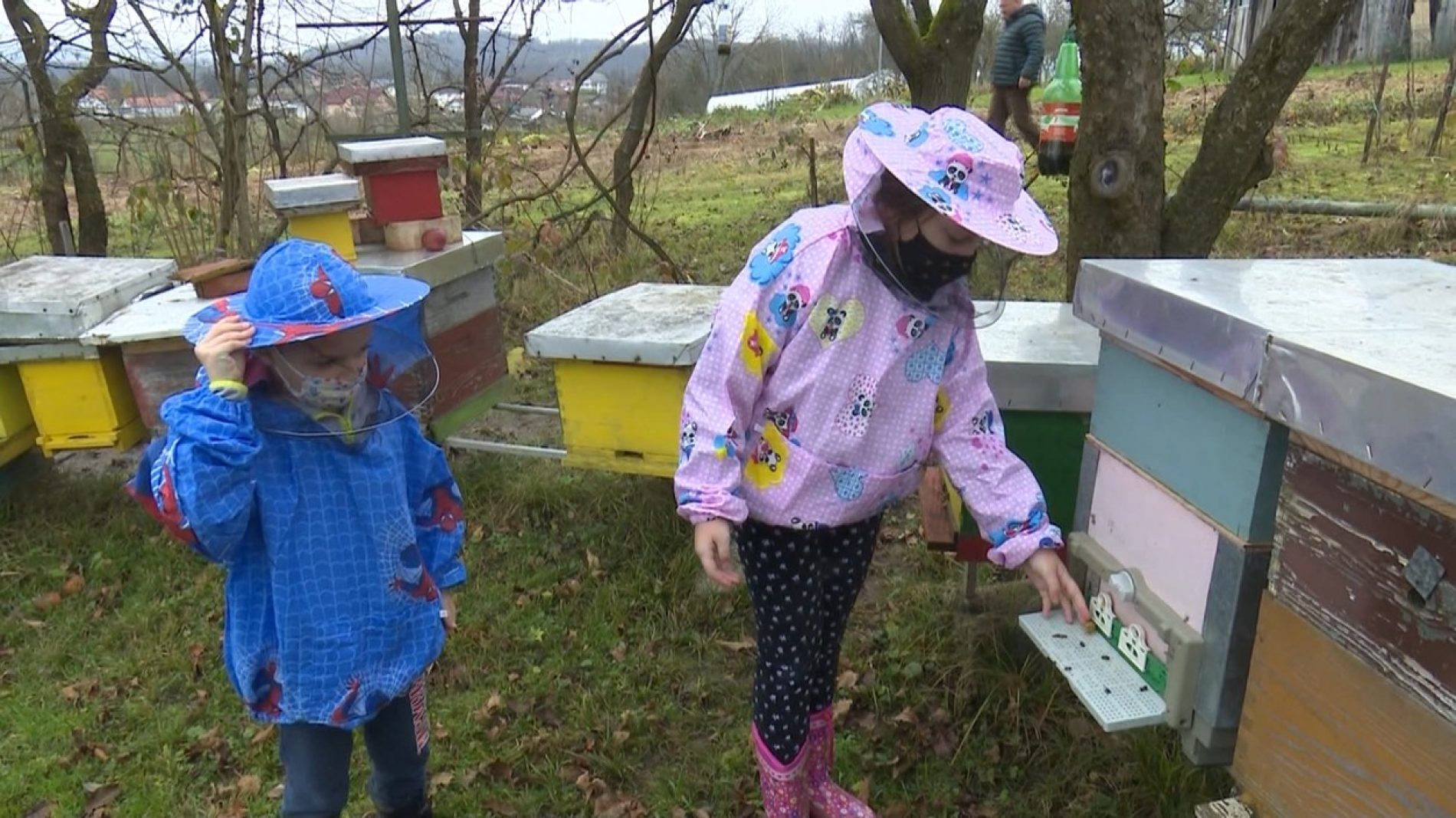 Amina i Ahmed, mladi pčelari iz Sanskog Mosta