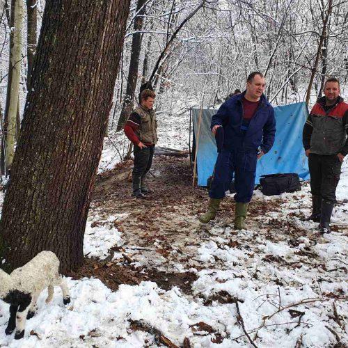 Jedni među posljednjim bosanskim nomadima: Braća Tahirovići gotovo cijelu godinu žive na otvorenom