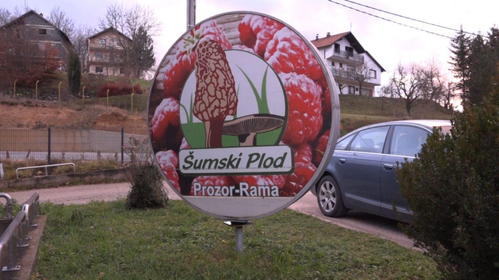 Šumski plod – Prozor Rama od male porodične firme do svjetskog izvoznika