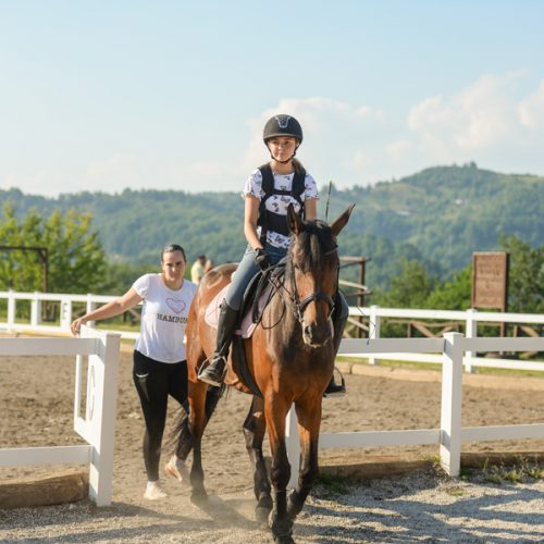 Razmišljali o ostanku u Americi, pa se vratili u Bosnu – sada vode uspješni konjički klub