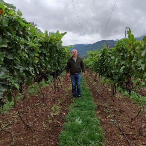 Nakon godina života u Švedskoj, vratio u svoj kraj koji danas krase njegovi voćnjaci i vinogradi