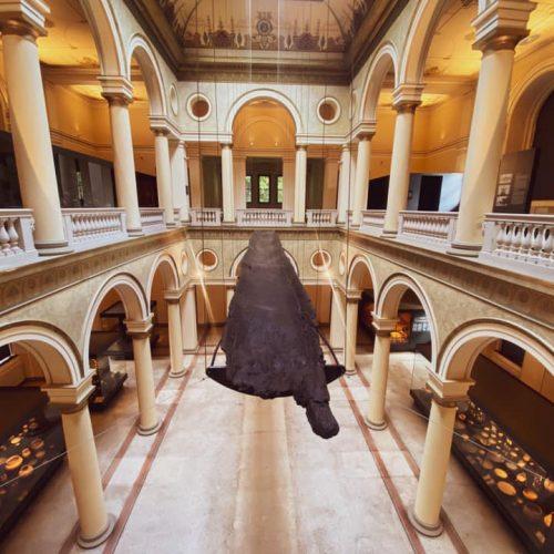 Zemaljski muzej Bosne i Hercegovine ima jednu od najvećih i najstarijih prethistorijskih zbirki u ovom dijelu Evrope